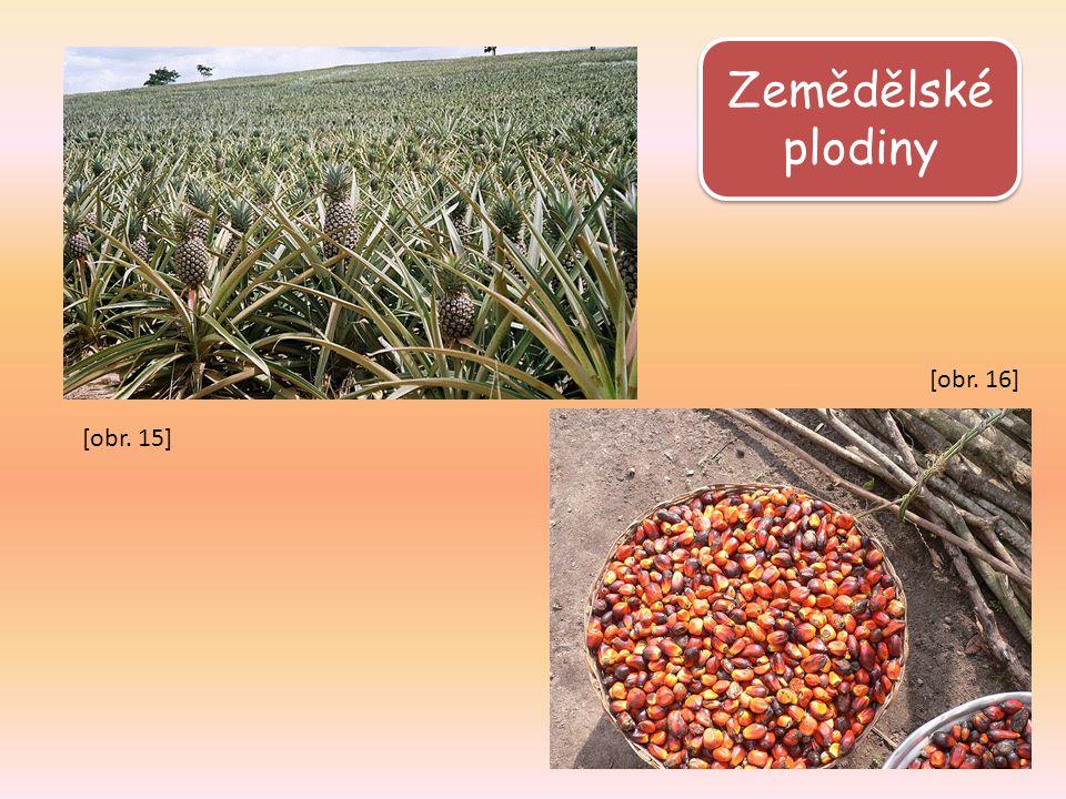 Zemědělské plodiny [obr. 16] [obr. 15]